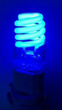 light_blue_02