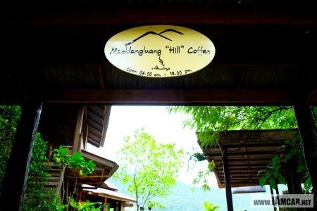Coffee Shop in Chiang Mai / ร้านกาแฟ เชียงใหม่ บรรยากาศดี ร้านแม่กลางหลวงฮิลล์คอฟฟี่